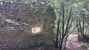 Carluc - Provence am Jakobsweg